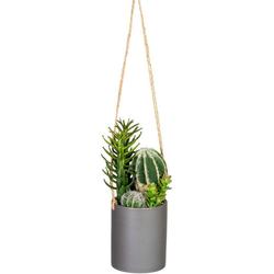 Kunstkaktus Layana Kaktus, andas, Höhe 24 cm, im Keramiktopf