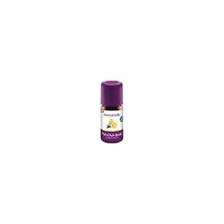 IMMORTELLE Öl Bio 5 ml