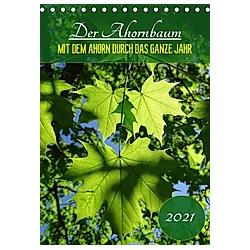 Der Ahornbaum - Mit dem Ahorn durch das ganze Jahr. (Tischkalender 2021 DIN A5 hoch) - Kalender