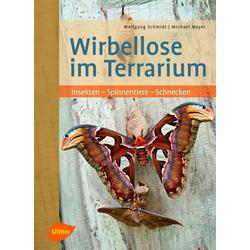 Wirbellose im Terrarium als Buch von Wolfgang Schmidt/ Michael Meyer