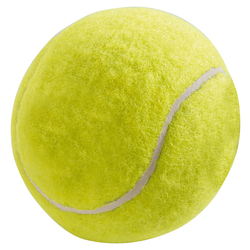 Hunter Smart Hundespielzeug Tennisball 12er Pack