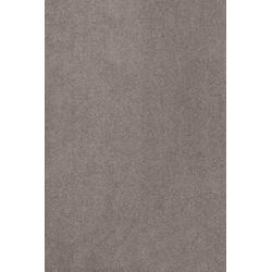 Teppich Proteus, aus Econyl® Garn, Meterware in 400 cm Breite braun 400 cm