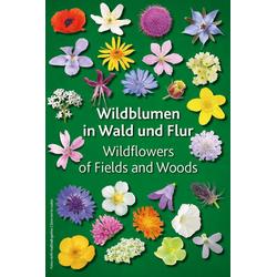 Wildblumen in Wald und Flur als Buch von