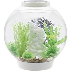 Oase 72007 Aquarium 30l mit LED-Beleuchtung