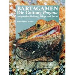 Bartagamen: Buch von Peter Maria Müller