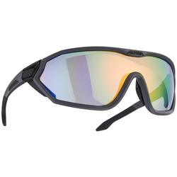 Alpina Sports Sonnenbrille S-Way L VLM+