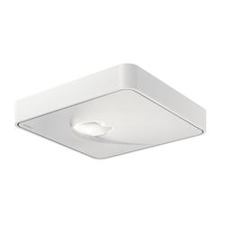 Nimbus Q One LED Deckenleuchte Wallwasher