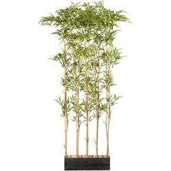 Künstliche Zimmerpflanze Bambusraumteiler Bambus, Creativ green, Höhe 160 cm, im Holzkasten