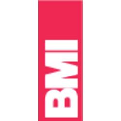 BMI 694050EM Magnet-Wasserwaage mit Magnet 50cm 0.5 mm/m