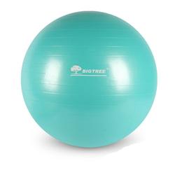 BIGTREE Gymnastikball Gymnastikball für Fitness grün Ø 65 cm