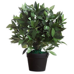 Paperflow Künstliche Pflanze Le Laurel 190 x 190 x 500 mm