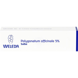 POLYGONATUM OFFICINALE 5% Salbe 25 g