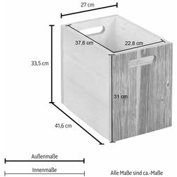 Home affaire Aufbewahrungskiste beige Kisten Truhen, Körbe Schlafzimmer Aufbewahrungsboxen