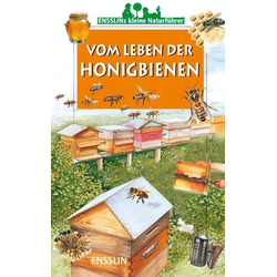 Vom Leben der Honigbienen als Buch von Leon Rogez
