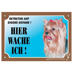 Nobby Warntafel Yorkshire Terrier