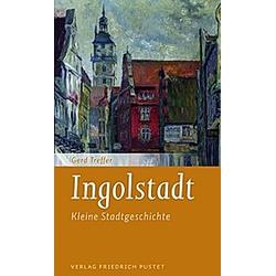 Ingolstadt. Gerd Treffer  - Buch