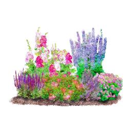 BCM Beetpflanze Romantischer Garten Set, 6 Pflanzen