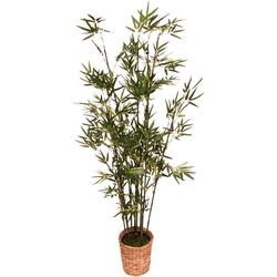 Kunstpflanze Bambus Bambus, I.GE.A., Höhe 150 cm