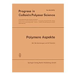Polymere Aspekte - Buch