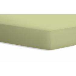 Schlafgut Spannbetttuch Jersey in grün, 100 x 200 cm