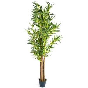 PLANTASIA Kunstpflanze Bambusstrauch, Höhe 160 cm, im Topf, mit Echtholzstamm