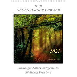 Der Neuenburger Urwald (Wandkalender 2021 DIN A3 hoch)