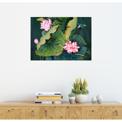 Posterlounge Wandbild, Lotusblüten 80 cm x 60 cm