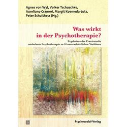 Was wirkt in der Psychotherapie?: Buch von