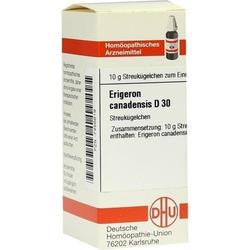 ERIGERON CANADENSIS D 30 Globuli 10 g