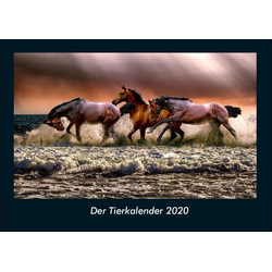 Der Tierkalender 2020 Fotokalender DIN A4