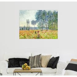 Posterlounge Wandbild, Unter den Pappeln 80 cm x 60 cm