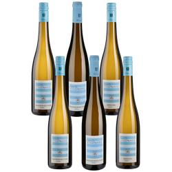 6er-Probierpaket Wittmann - Wittmann - Weinpakete
