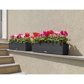 LECHUZA Balkonkasten Balconera Cottage 80 Komplettset 80 x 19 x 19 cm grau