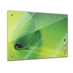 Bilderdepot24 Glasbild, Memoboard - Pflanzen & Blumen - Bananenblatt 80 cm x 60 cm