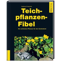 Teichpflanzen-Fibel als Buch von Ingeborg Polaschek