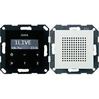 Gira Unterputz-Radio RDS 228003