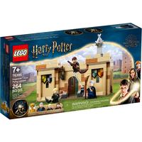 Lego Harry Potter Hogwarts?: Erste Flugstunde 76395