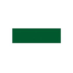 AS4HOME Möbelfolie Tafelfolie grün Möbelfolie 0,675 x 1,5 m, Muster: Uni grün