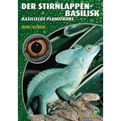 Der Stirnlappenbasilisk als Buch von Ingo Kober