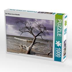 Der Winter ist ein Künstler Lege-Größe 64 x 48 cm Foto-Puzzle Bild von Renate Grobelny Puzzle