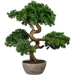 Kunstbonsai Bonsai Lärche Bonsai Lärche, Creativ green, Höhe 65 cm, in Schale aus Naturmaterial