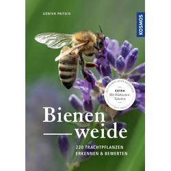 Bienenweide als Buch von Günter Pritsch