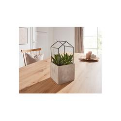 HomeLiving Blumentopf Betonhaus