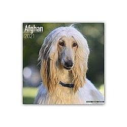 Afghan - Afghanen 2021 - Kalender