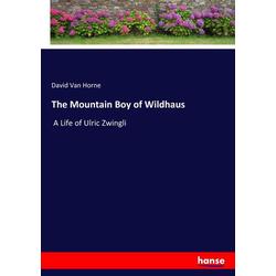 The Mountain Boy of Wildhaus als Buch von David Van Horne