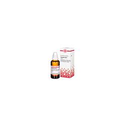 PIMPINELLA ALBA Urtinktur 50 ml