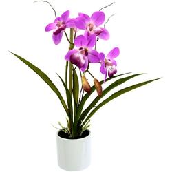 Kunstorchidee Orchidee, I.GE.A., Höhe 33 cm, im Keramiktopf lila