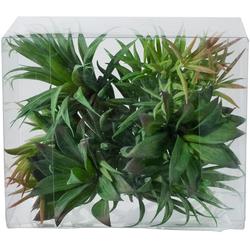 Kunstpflanze Sukkulenten Sukkulente, Creativ green, Höhe 17 cm, 6er Set