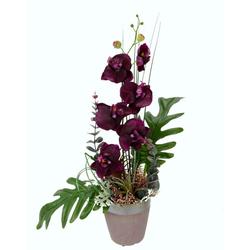 Kunstpflanze Orchidee Orchidee, Höhe 50 cm