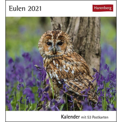 Eulen 2021